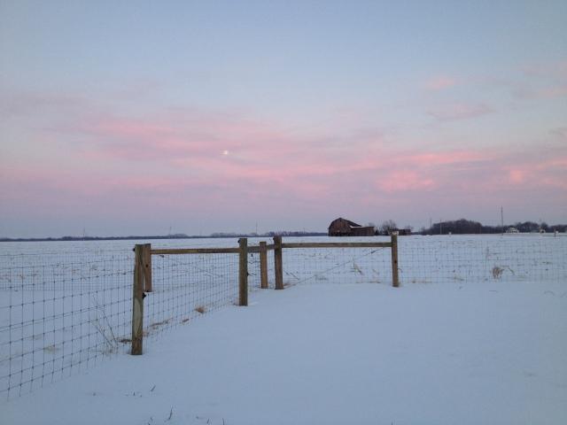 February_Moon