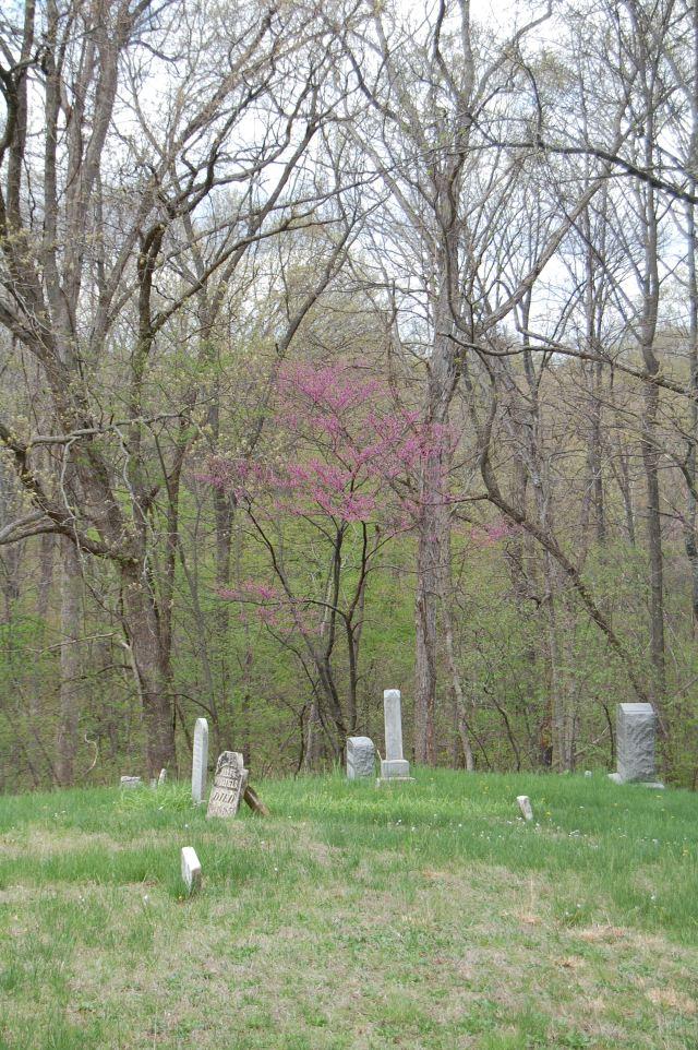 Ridge_Cemetery_Illinois