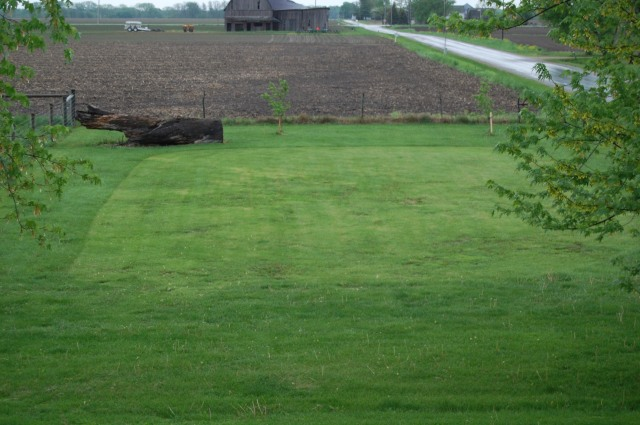 The center area (mowed shorter) may become the next pumpkin patch.