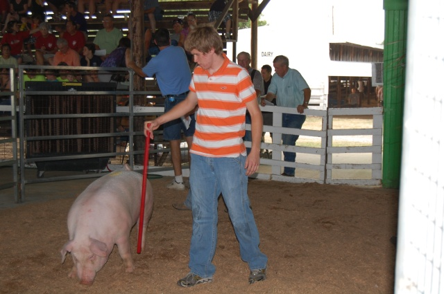 My son & his pig during the 2012 4-H auction.