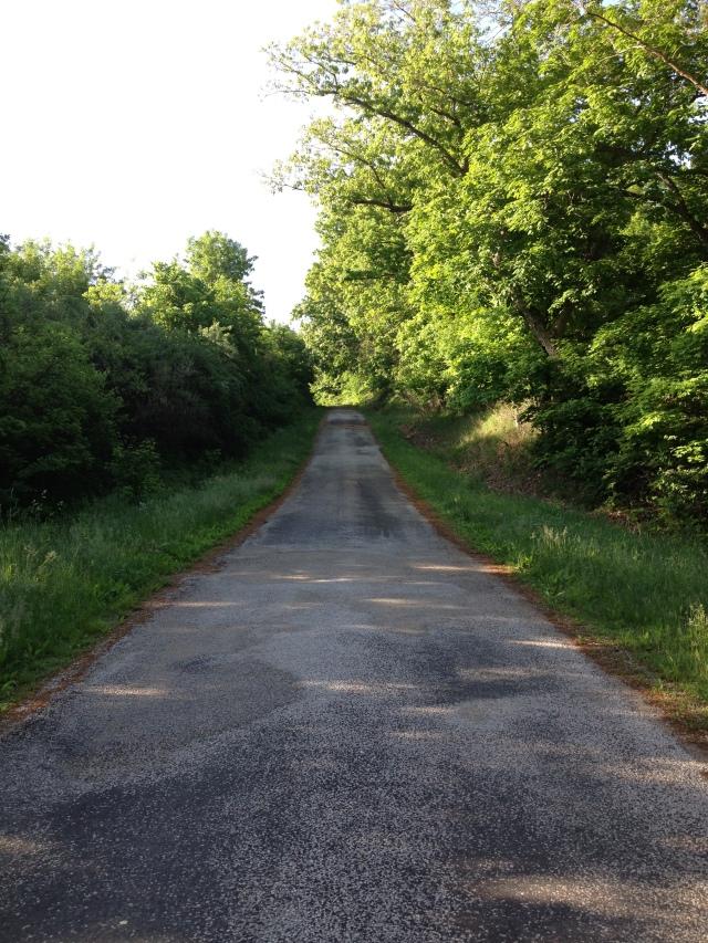 Walk Hill