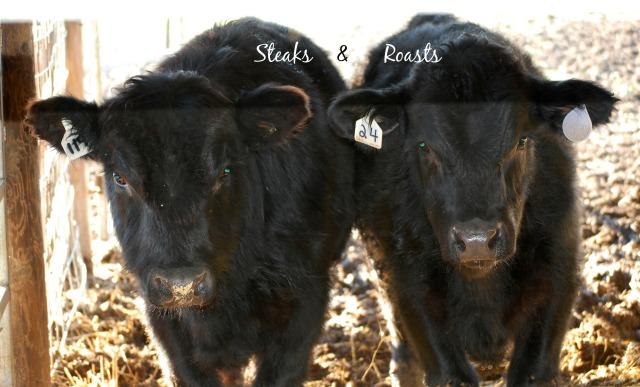 SteaksnRoasts