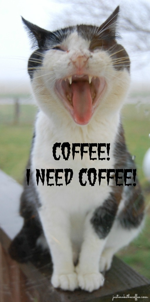 3_20 Tom_Kitty_Coffee