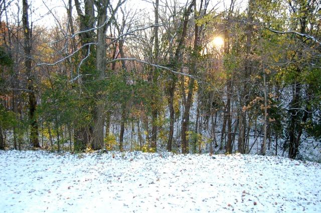 Nov10_Snow